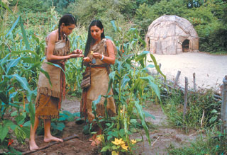 an introduction to the history of the wampanog indians